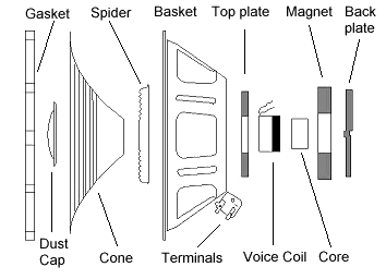 How a Speaker works detailed